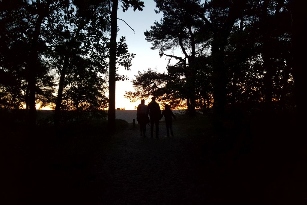 Nationaal Park De Abends im Loonse en Drunense Duinen