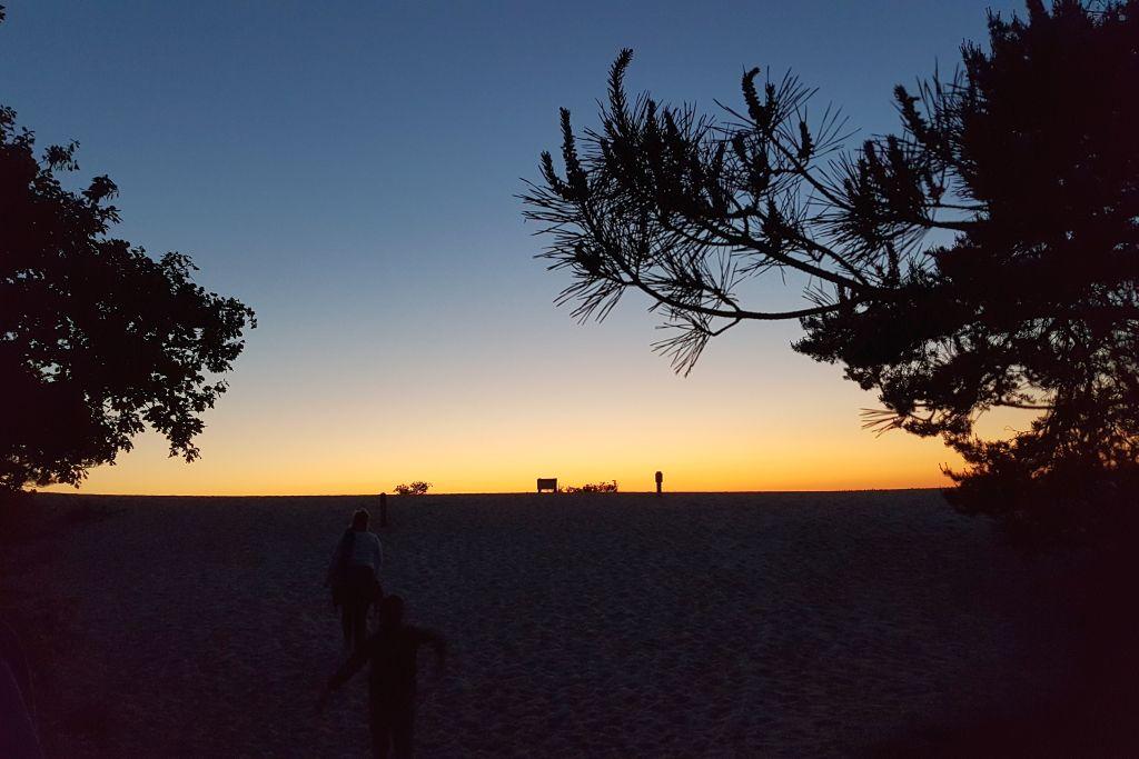 Nachts im Nationalpark De Abends im Loonse en Drunense Dünen