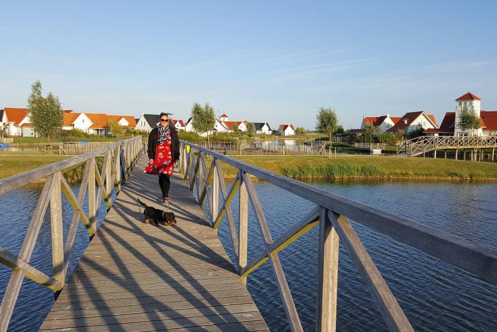 Roompot Park Cadzand Brücke