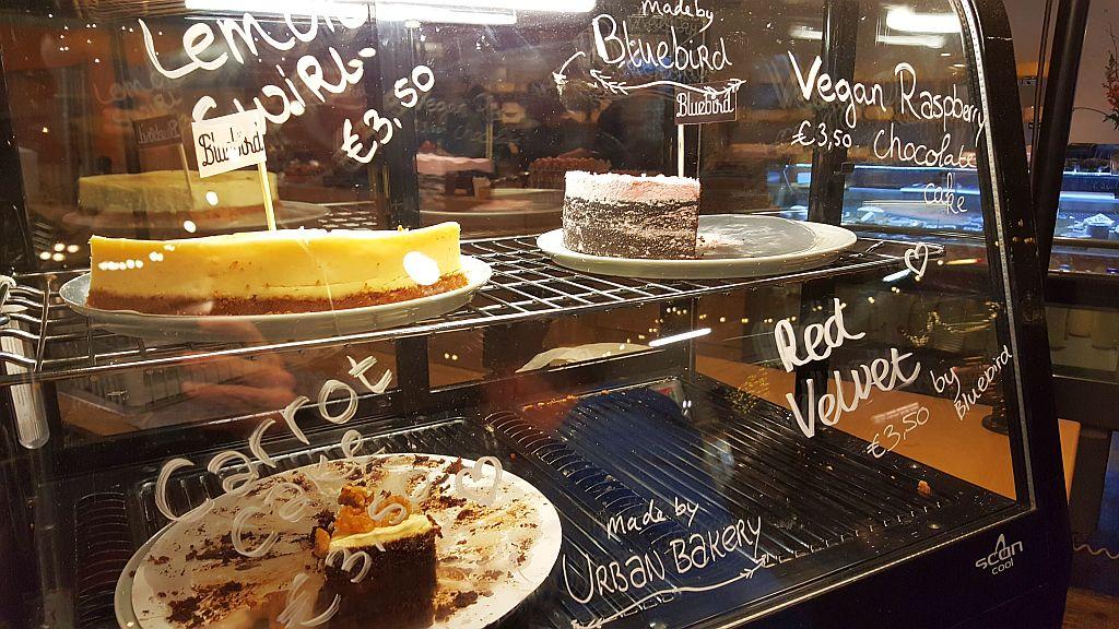 Kuchen von Urban Cake Fenix Food Factory Rotterdam