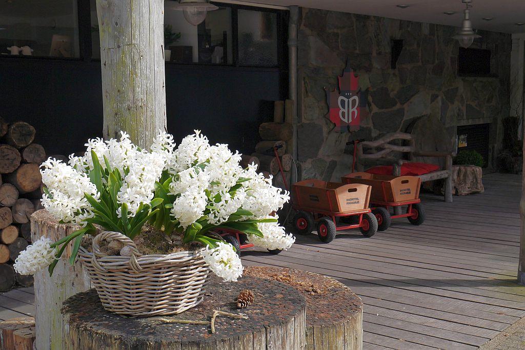 Badhotel Rockanje Eingang Blumen