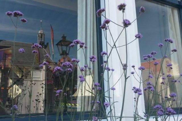 Zierikzee Spiegelung Fenster