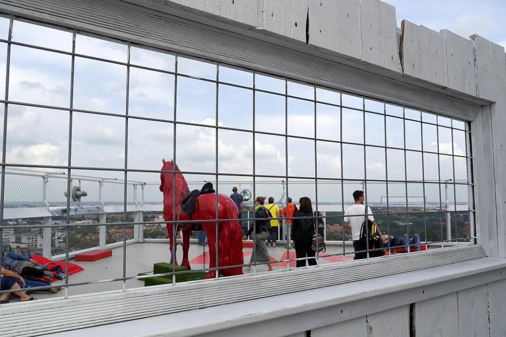 Amsterdam Lookout Gitter Pferd