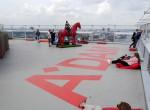 Pferd Plattform Amsterdam Lookout