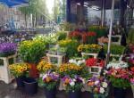 Blumenverkauf Amsterdam