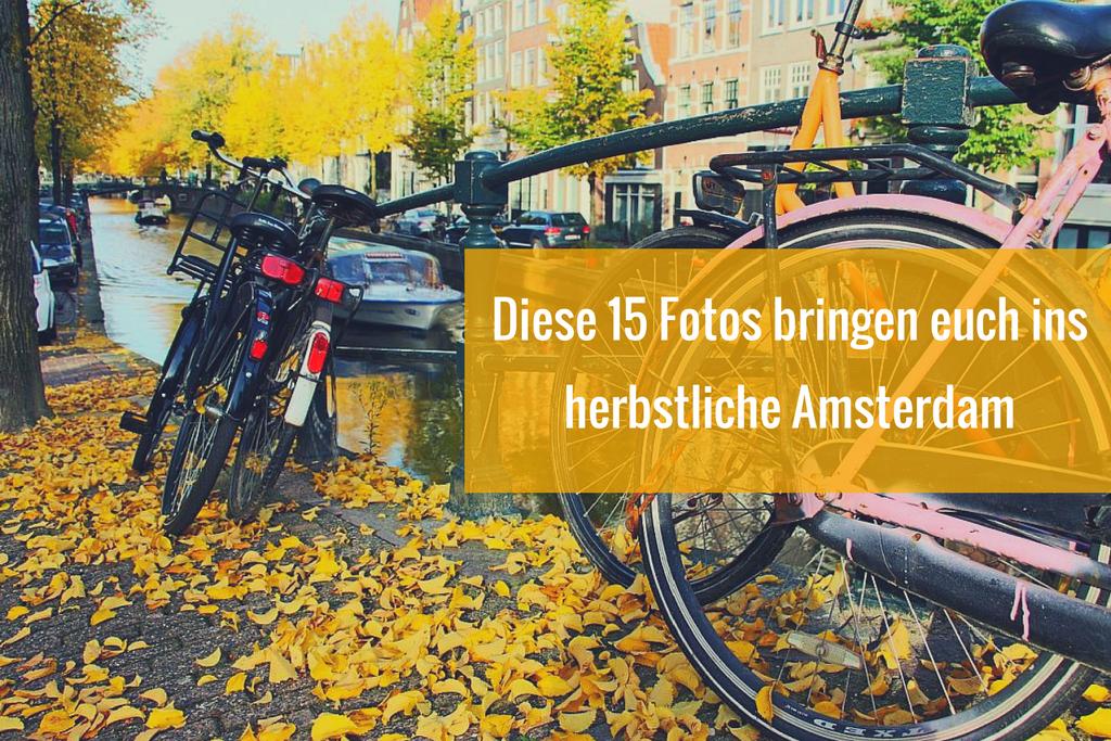 15 Fotos, die euch sofort ins herbstliche Amsterdam bringen