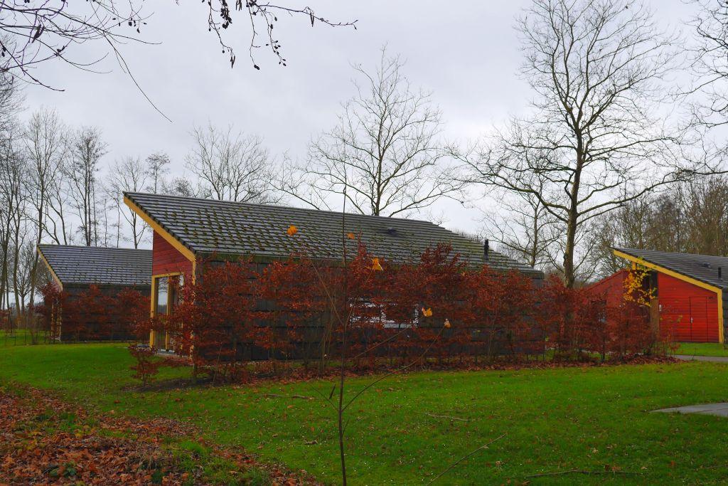 Landal Landgoed Aerwinkel Ferienhäuser für 4 Personen