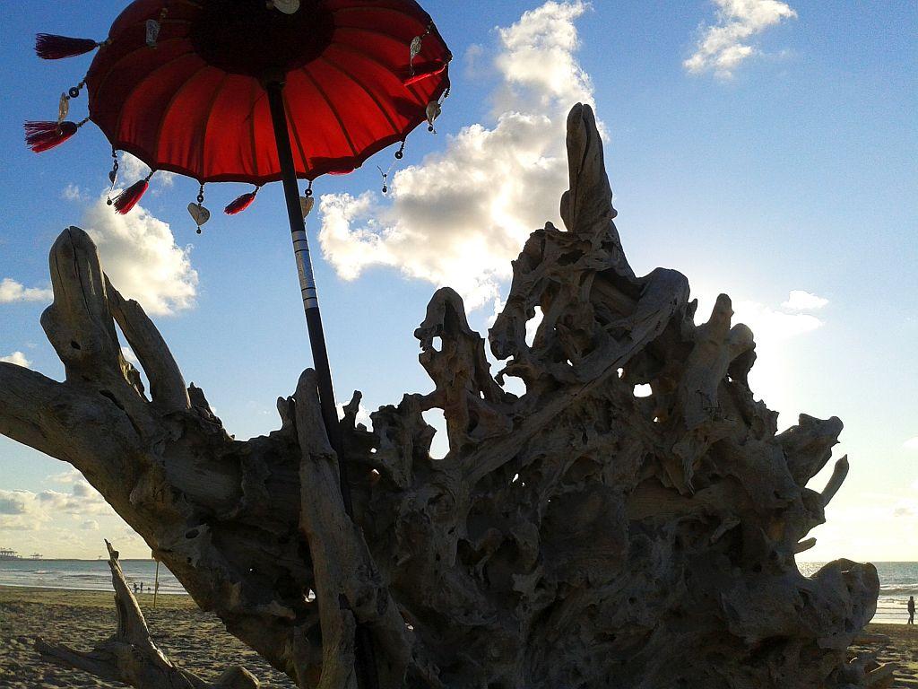 Elelements Beach Club Hoek van Holland Deko