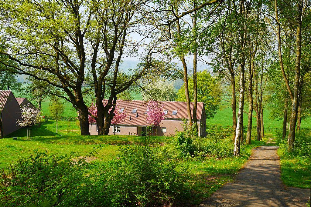 Frühling Hoog Vaals Landal