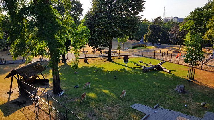 Kronenburgerpark Nijmegen Tiergehege