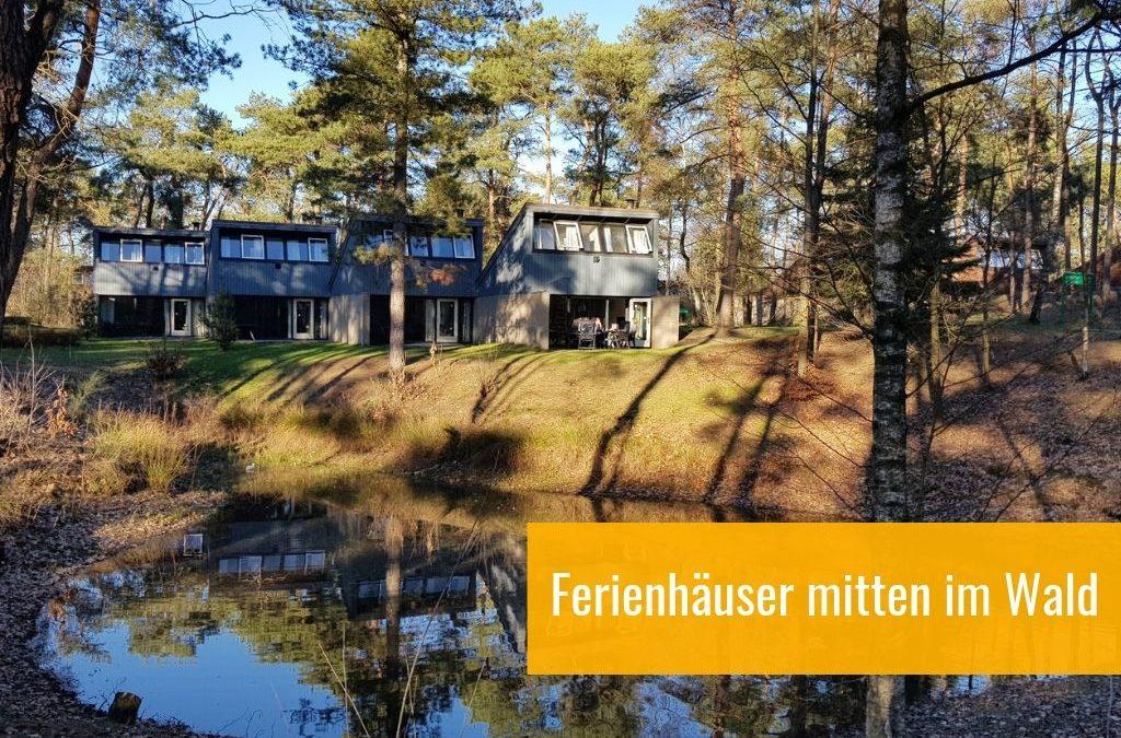 Landal Het Vennenbos: Urlaub im Wald – für Friends & Family mit Hund