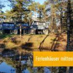 Landal Het Vennenbos: Urlaub im Wald - für Friends & Family mit Hund