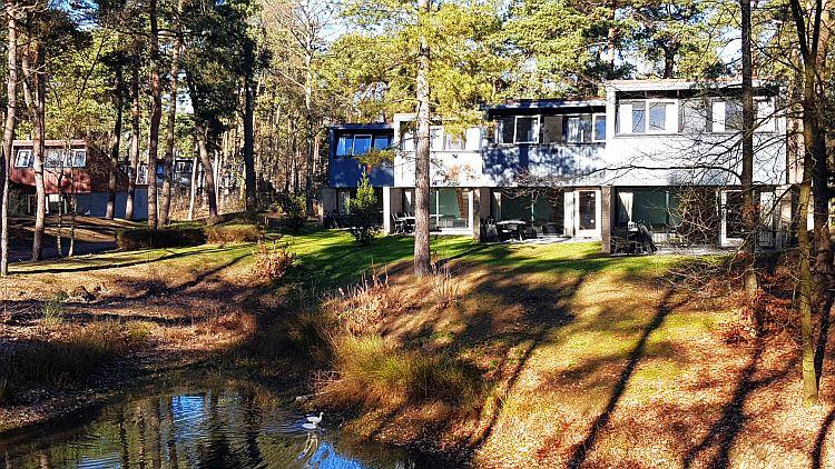 Ferienhäuser Wald Het Vennenbos