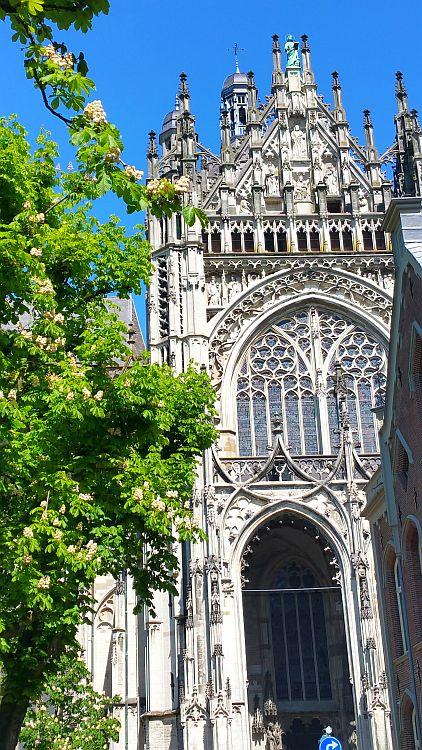 Hertogenbosch St. Johannes Kathedrale
