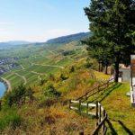 Mont Royal: Mosel-Urlaub mit königlichem Weinberg-Blick